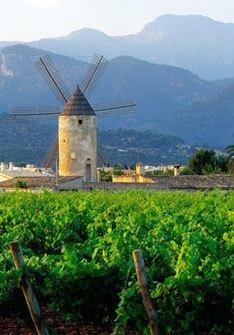 Binissalem-Mallorca