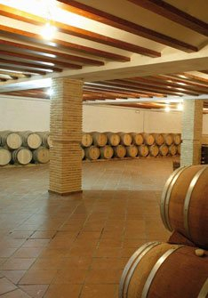 Crápula Wines