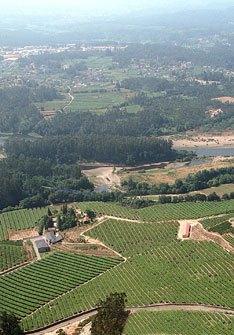 Bodegas Fillaboa