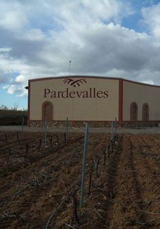 Viñedos y Bodega Pardevalles