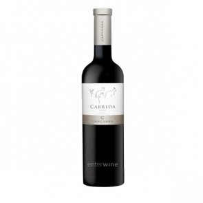 vino cabrida 2015