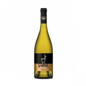 vino shaya habis 2016