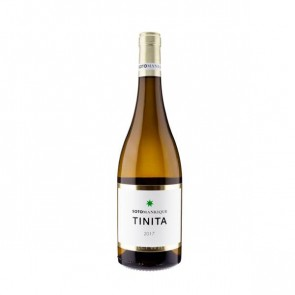 tinita viñas de verdejo 2013